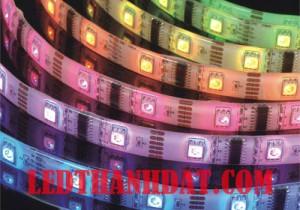 LED Dây dán chống nước 50×50 Đơn Sắc