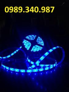LED CUỘN 5050 XANH DƯƠNG