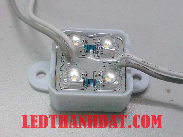 led-modul-4-bong-de-nhua