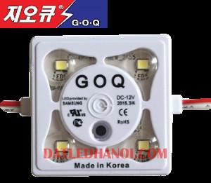 GOQ 4 LED-2835