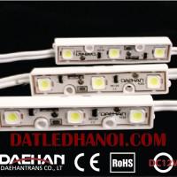 led-module-3bong-chip-samsung-5050-daehan-starn03-newled-01