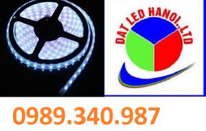 LED CUỘN 5050 MÀU TRẮNG