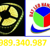 LED CUỘN 5050 VÀNG